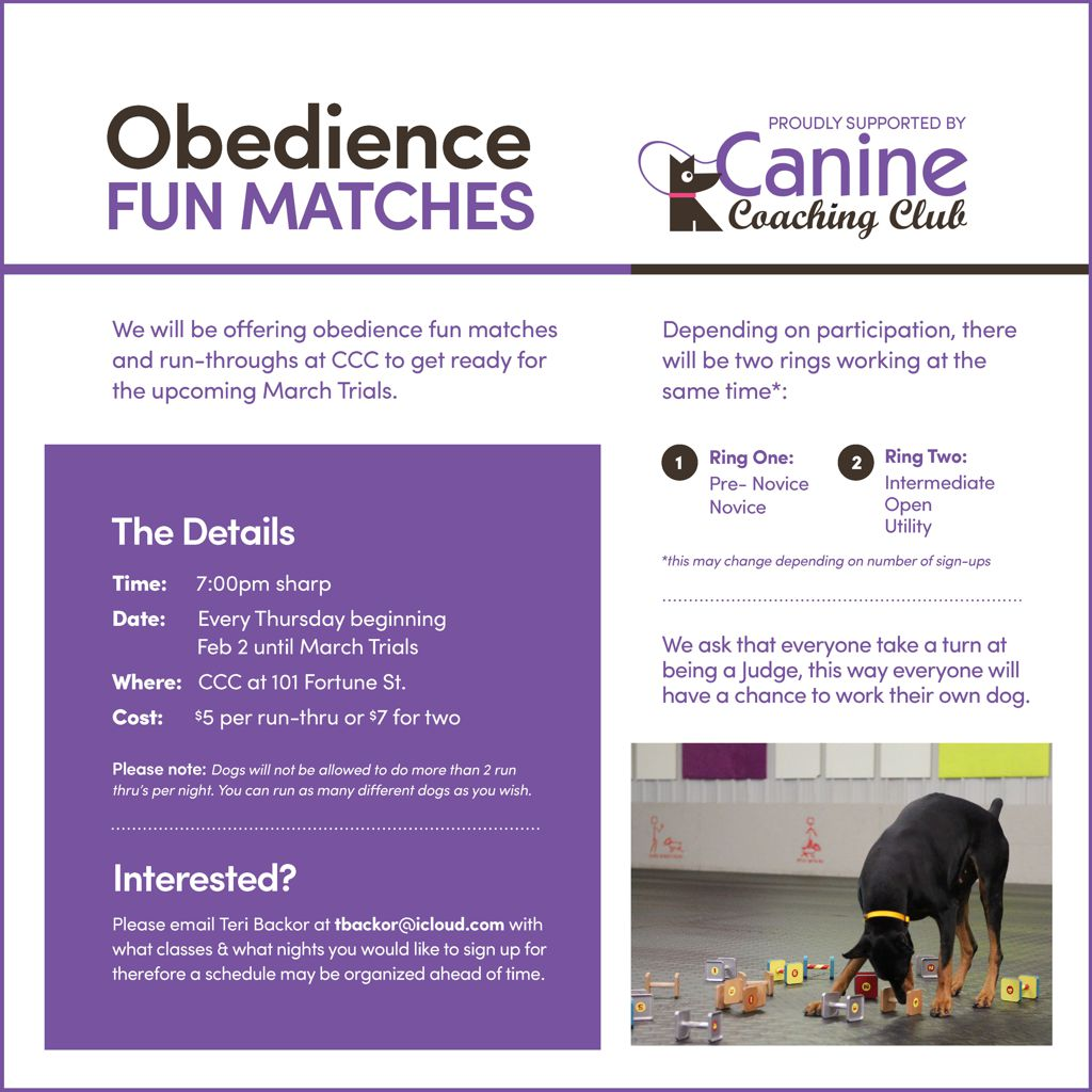 Obedience Fun Matches